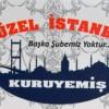 Es Güzel İstanbul Kuruyemiş