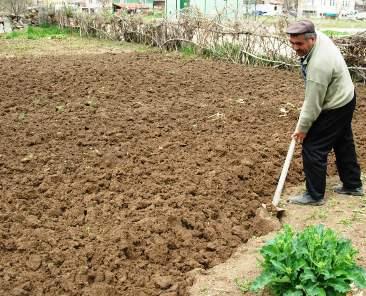 Çubuk'ta Sebze Bahçe Ekim Hazırlıkları Başladı