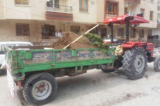 Ankara Organik Hayvan Gubresi (6)