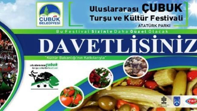 9. Uluslararası Çubuk Turşu ve Kültür Festivali