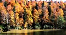 Çubuk'un Karagöl'ü Renk Renk