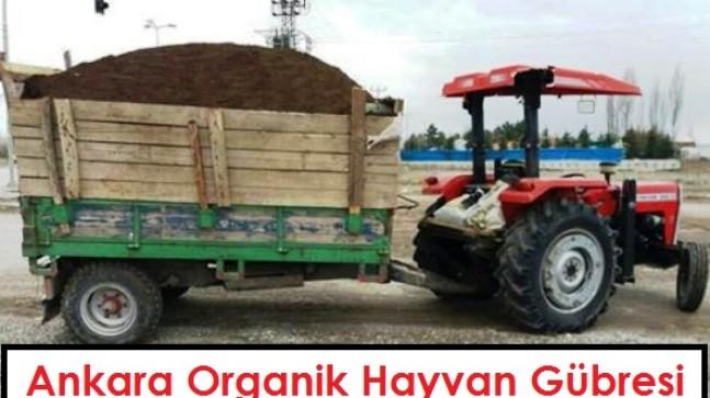 Ankara Organik Hayvan Gübresi